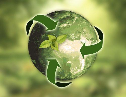 Cumple los Objetivos de Desarrollo Sustentable y mejora la sostenibilidad de tu empresa.