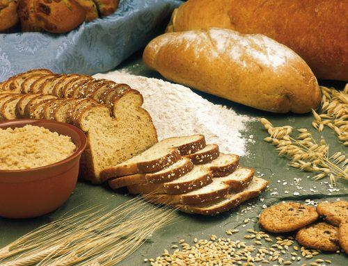 Procedimiento para la Defensa de los Alimentos. ¿Por qué es importante?